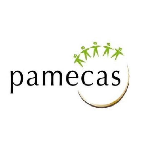 pamecas